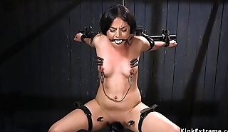 Brunette submitted with head in a box